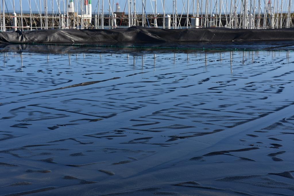 Chantier Port Haliguen Quiberon  2018 + 2019 ! - Page 5 Dsc_5238
