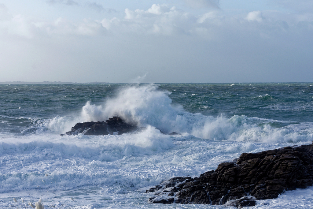 Premier coup de vent sur la Côte Sauvage ! Dsc_5325