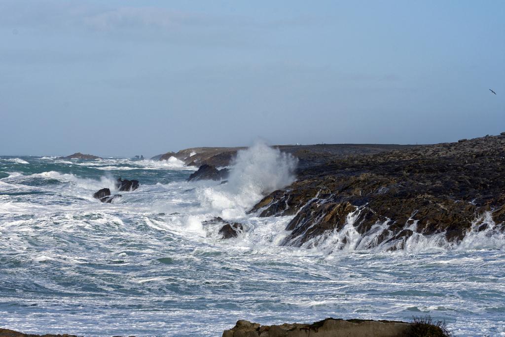 Premier coup de vent sur la Côte Sauvage ! Dsc_5326