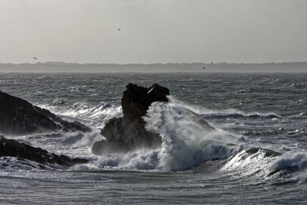 Premier coup de vent sur la Côte Sauvage ! Dsc_5329