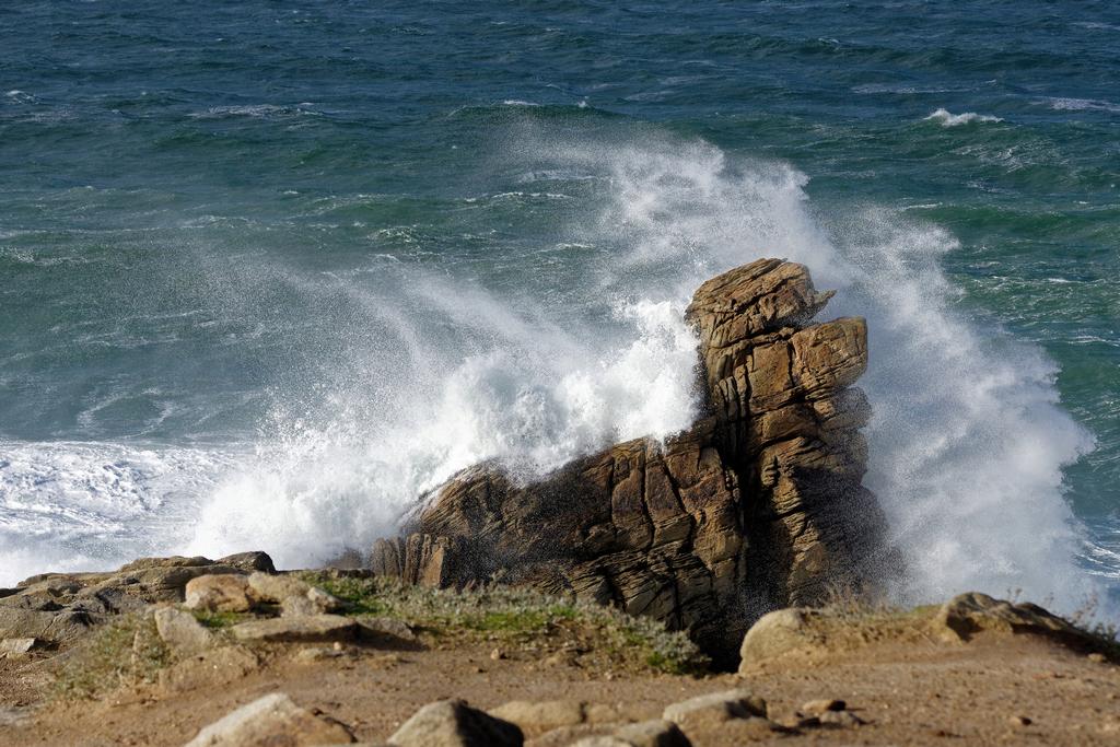 """Lavage maritime d'un """"chien de mer"""" Dsc_5340"""