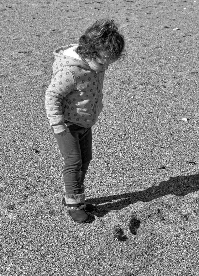 Qui à marcher sur la plage !!! Dsc_5713