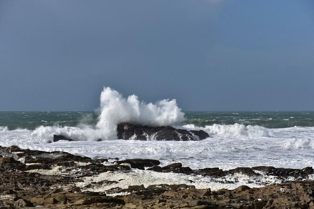 Grosses vagues du classique ! Dsc_5722