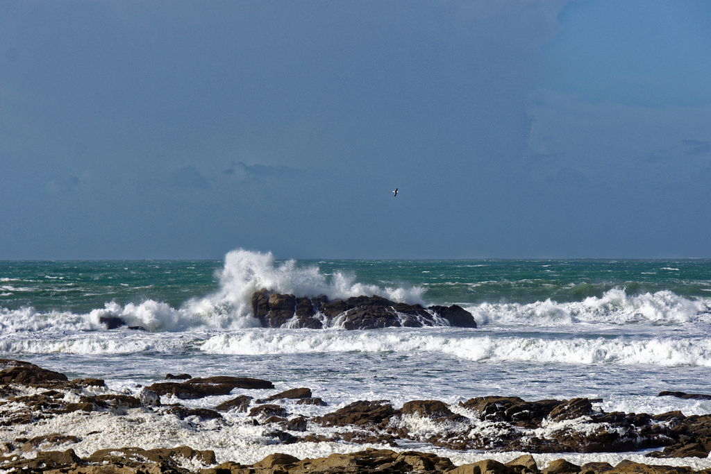 Grosses vagues du classique ! Dsc_5725