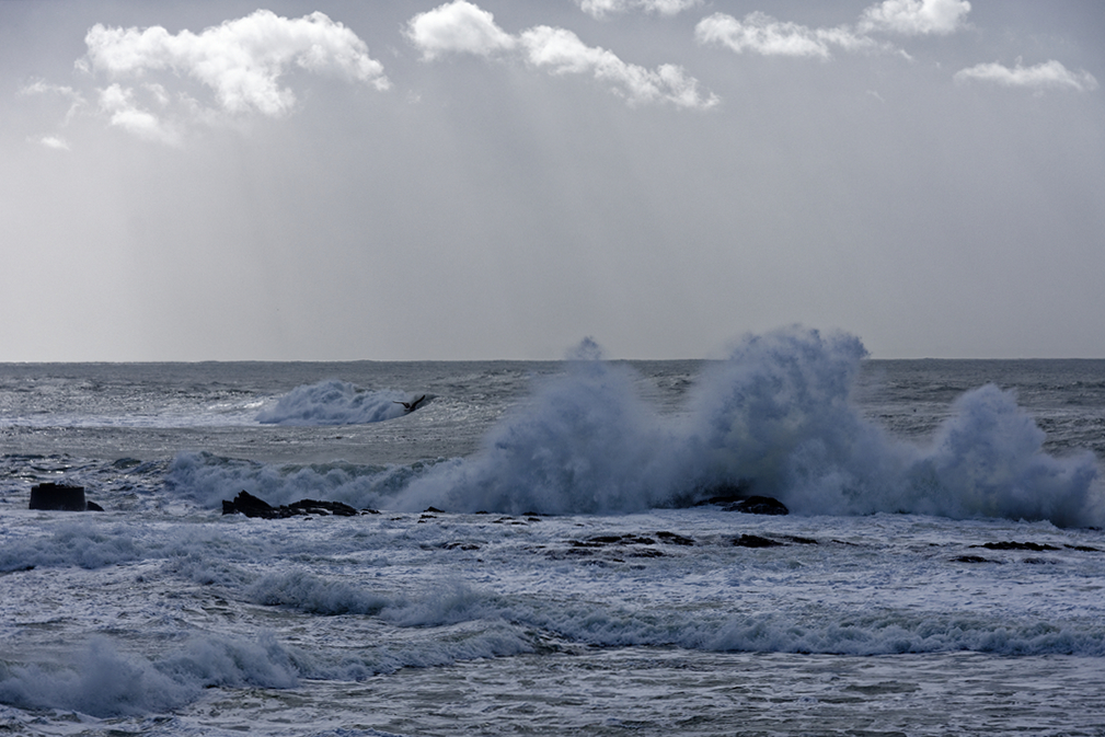 Grosses vagues du classique ! Dsc_5729