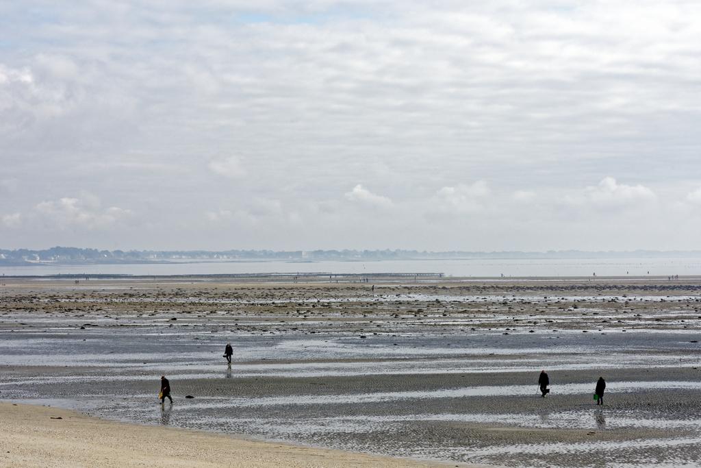 Grande marée et pêche à pied baie de Quiberon  ! Dsc_5914