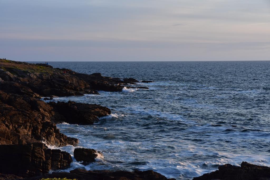 Et nous restons des heures à regarder la mer ! Dsc_6614