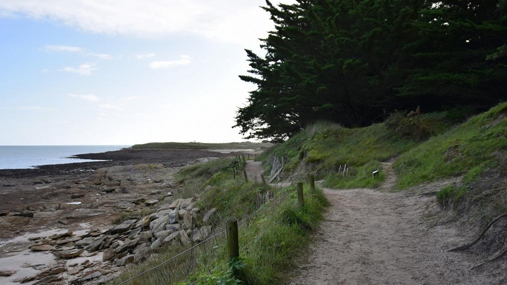Cheminement littoral ! Dsc_7334