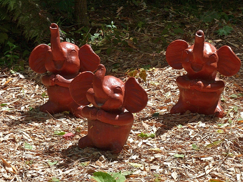 Trois éléphants, ça trompe, ça trompe !!! P1040725