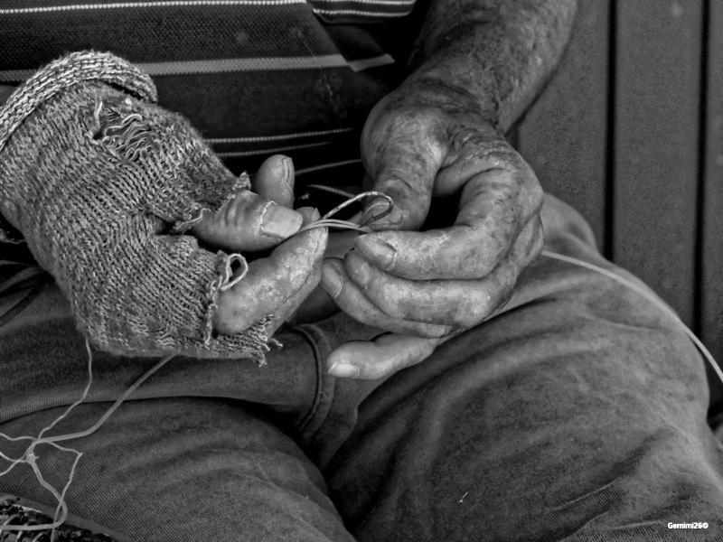 Mains de pêcheur P5200110