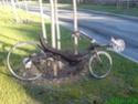 Bô le vélo [Performer Roadster] Dsc00114