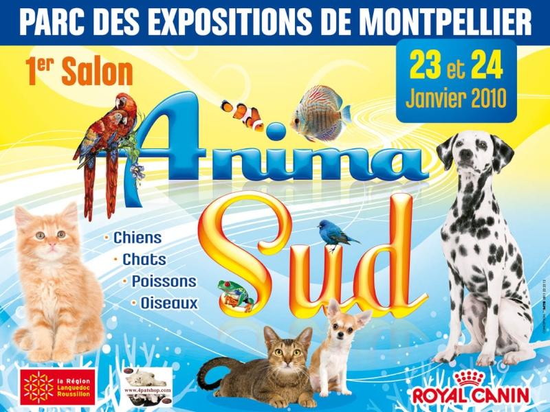 1er salon Animasud au parc expo de Montpellier [23&24 janvier 2010] Image_10