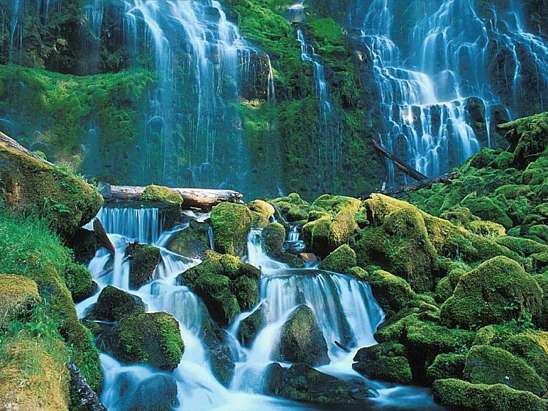 Nature Waterf10