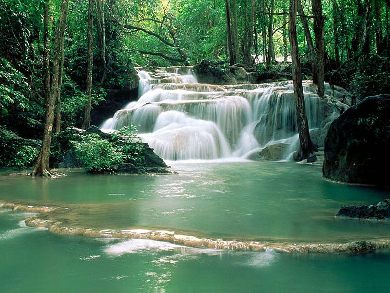 Nature Waterf12