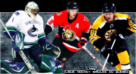 NHL-Fans