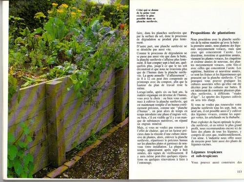 Comment installer un jardin en carré Jardin14