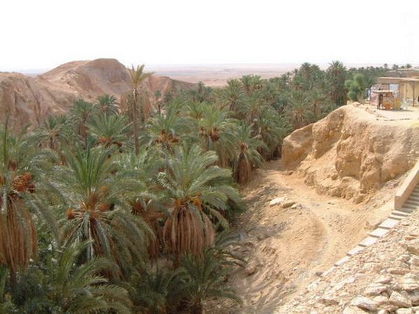 السياحة في ولاية النعامة 1710