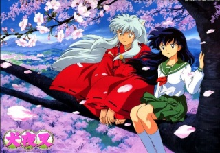 What is your anime? Inuyas10