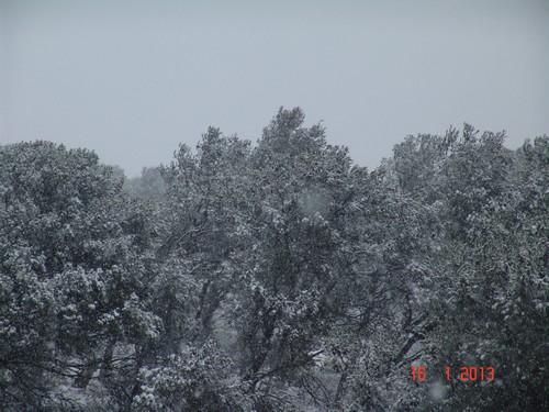 vos ambiances hivernales !!! c'est parti !! - Page 3 Dsc01917