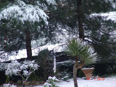 vos ambiances hivernales !!! c'est parti !! - Page 3 Dsc01919