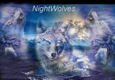 NightWolves: Beta and Gold