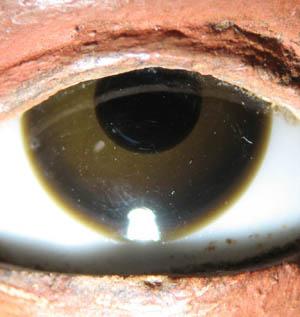 les yeux des sculptures . (incrustation, pâte de verre, œil) Oeil_310