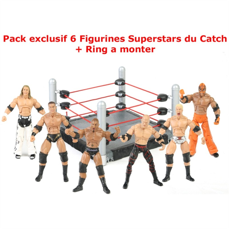"WWE Build n Brawl : des figs de catch 3""3/4 enfin dispo en France Roc15110"