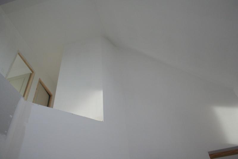 Peintures pour hall d'entrée avec vide sur hall Img_0014