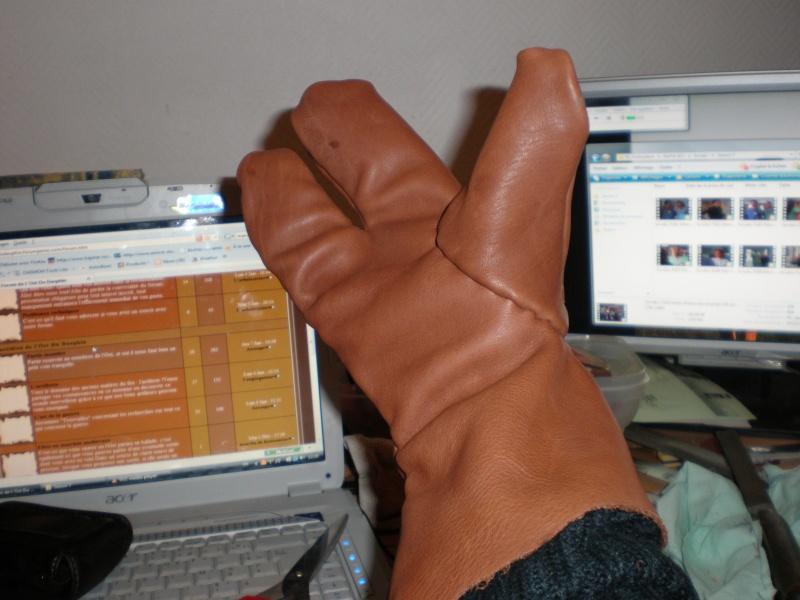 Moufles simple ou trois doigts P1100411