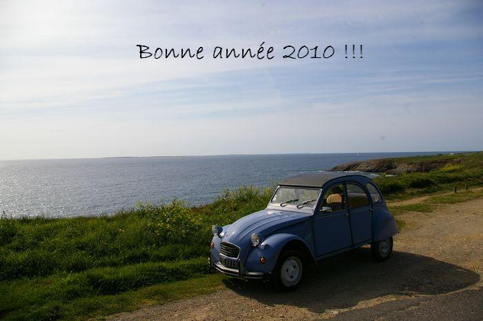 Bonne année 2010 Imgp3110