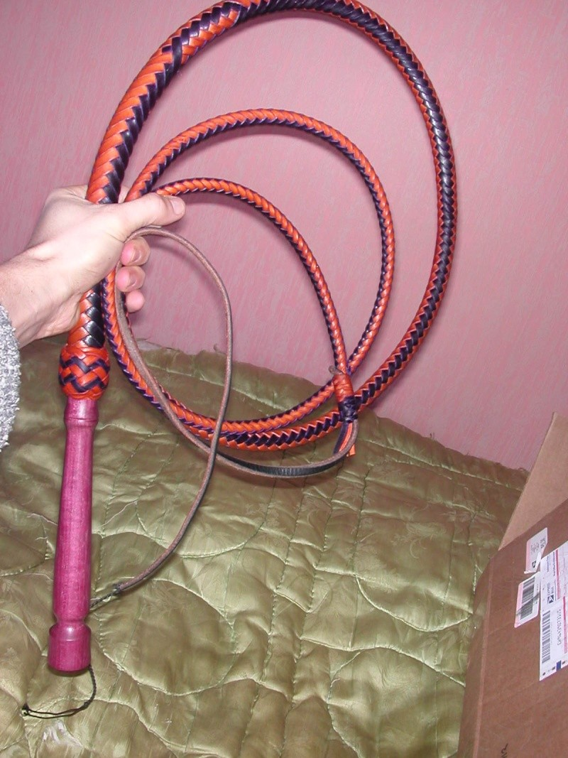 8ft Skip's two-tone with wood handle bullwhip Dscn0312
