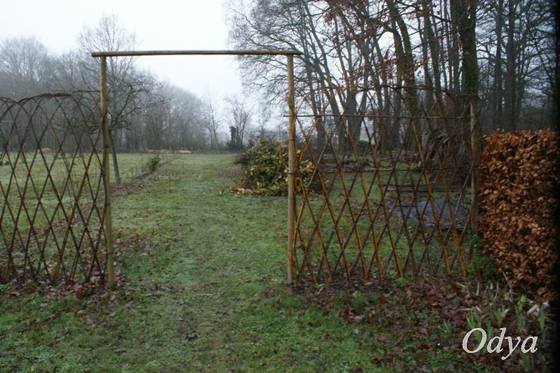 L'osier au jardin : plessis - haie végétale - cabane - tipi Jardin29