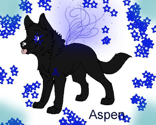 X's art Aspen_10