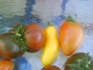 Tomates Dsc00014