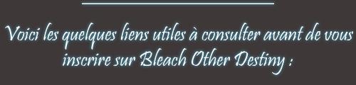 Bleach Other Destiny Quelqu10