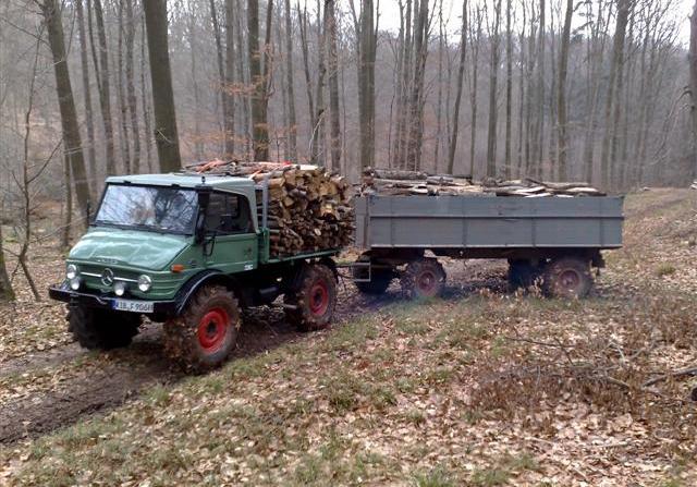 unimog mb-trac wf-trac pour utilisation forestière dans le monde 1210
