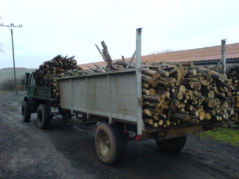 unimog mb-trac wf-trac pour utilisation forestière dans le monde - Page 2 406_hi10
