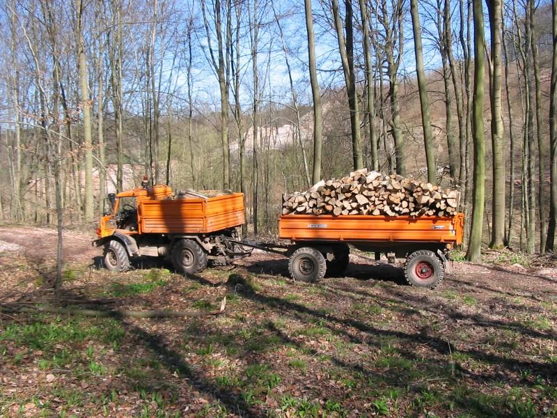 unimog mb-trac wf-trac pour utilisation forestière dans le monde 406mue10
