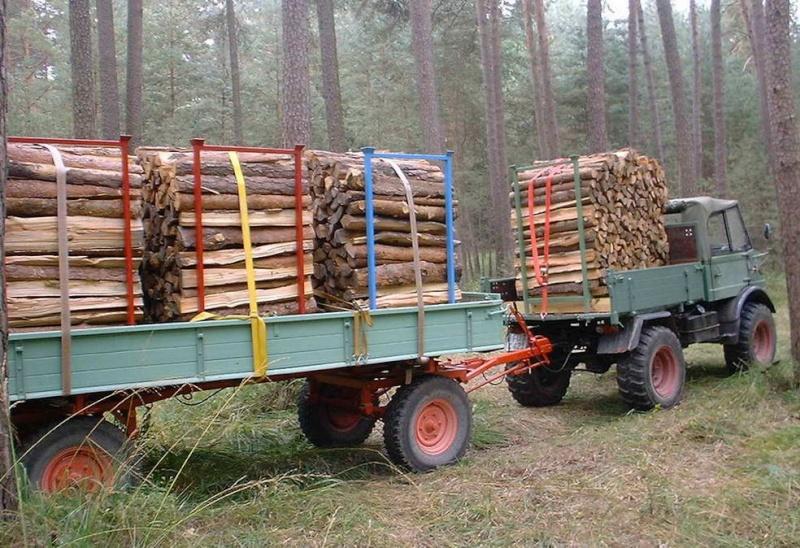 unimog mb-trac wf-trac pour utilisation forestière dans le monde Brennh11