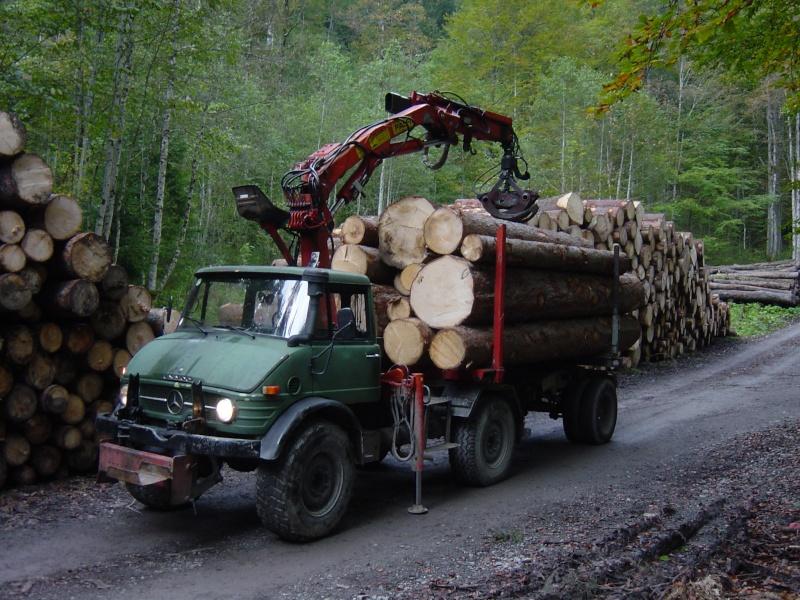 unimog mb-trac wf-trac pour utilisation forestière dans le monde Dsc03610