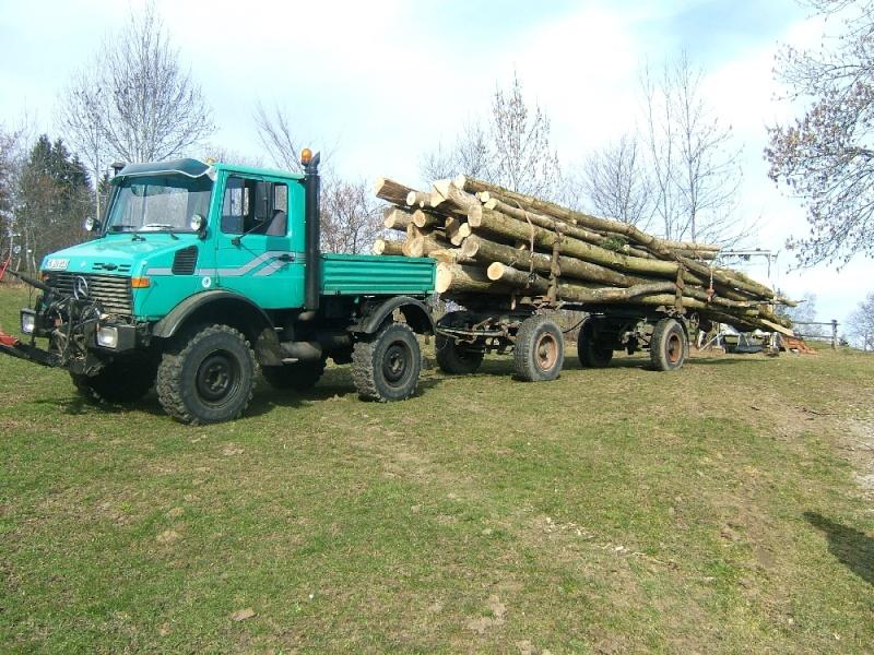 unimog mb-trac wf-trac pour utilisation forestière dans le monde Eschen10