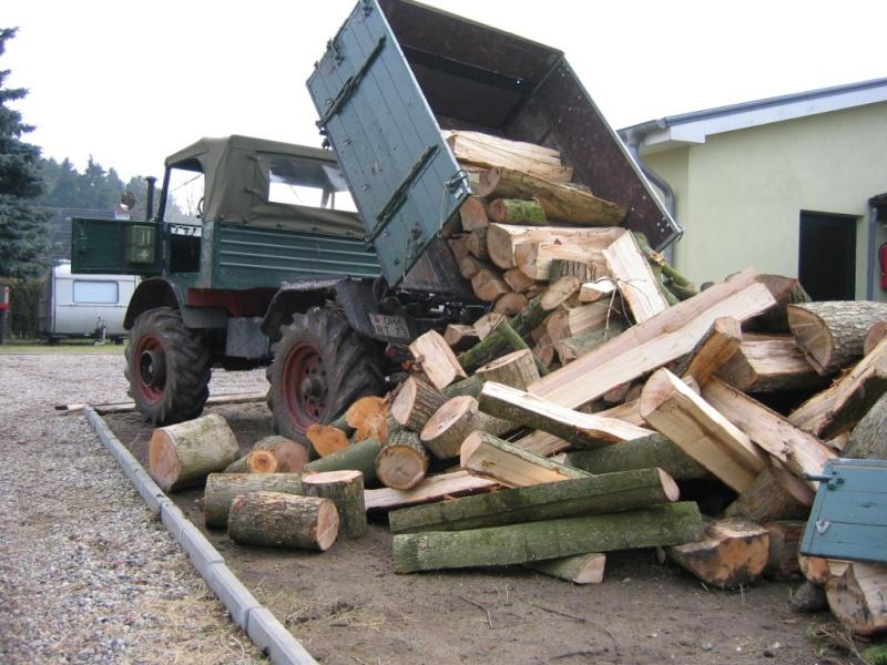 unimog mb-trac wf-trac pour utilisation forestière dans le monde Holz0410
