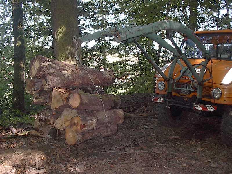 unimog mb-trac wf-trac pour utilisation forestière dans le monde Im005110