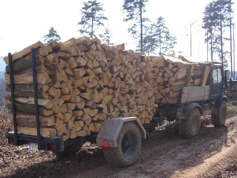 unimog mb-trac wf-trac pour utilisation forestière dans le monde Unimog13