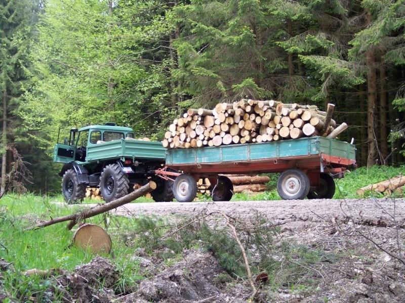 unimog mb-trac wf-trac pour utilisation forestière dans le monde Wald10