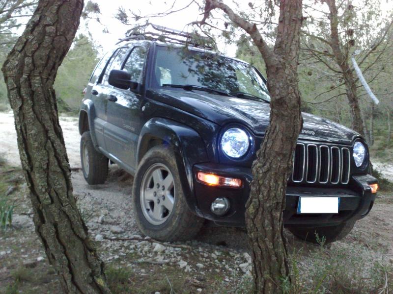 Ecco la mia Jeep Fratelli - Pagina 4 Bosco111