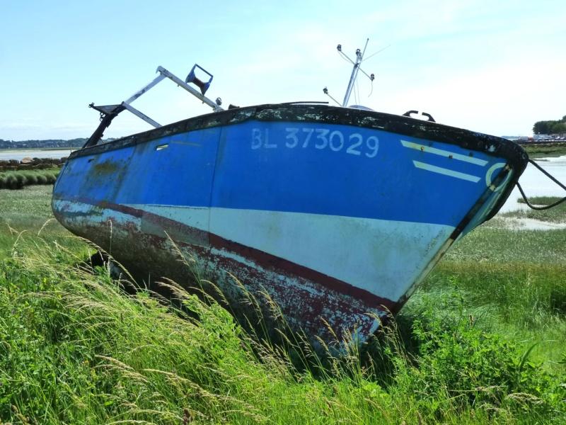 [VIE DES PORTS] Quelques bateaux de pêche (sur nos côtes Françaises) - Page 38 10417_10