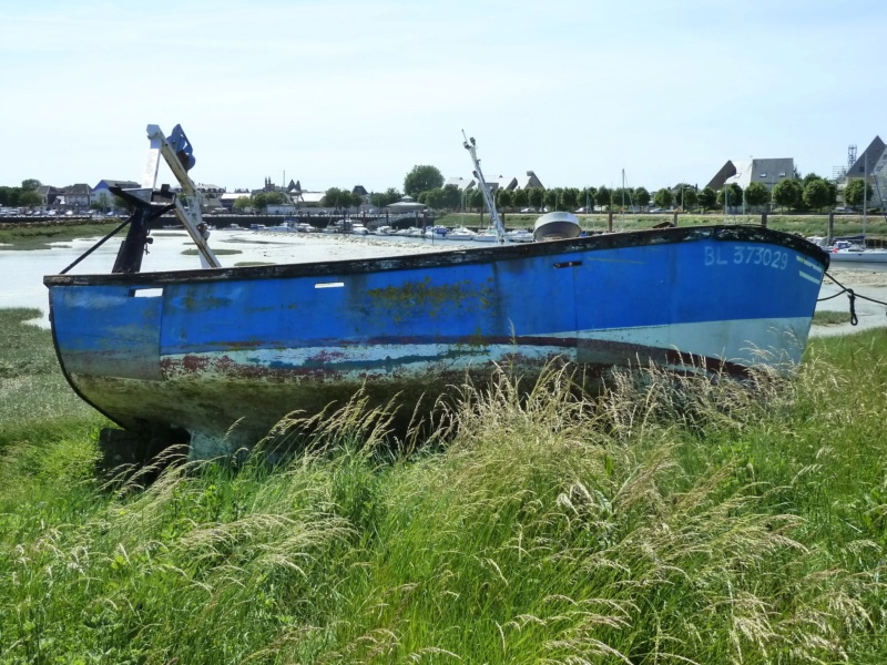 [VIE DES PORTS] Quelques bateaux de pêche (sur nos côtes Françaises) - Page 38 10419_10