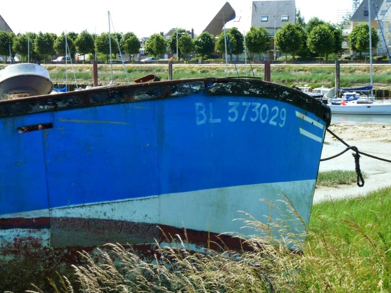 [VIE DES PORTS] Quelques bateaux de pêche (sur nos côtes Françaises) - Page 38 10421_10