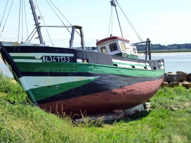 [VIE DES PORTS] Quelques bateaux de pêche (sur nos côtes Françaises) - Page 39 10423_10